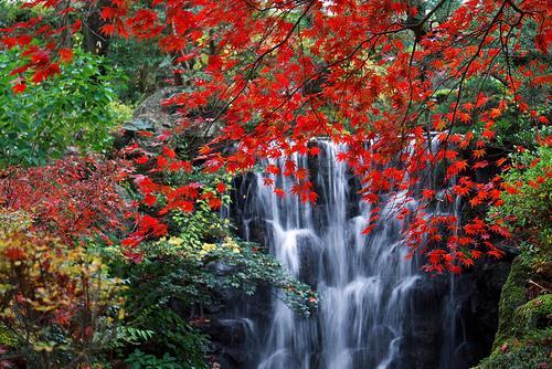 塩原温泉~塩原渓谷の美しい眺めと極上の湯